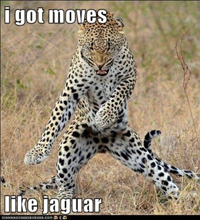 i got moves   like jaguar