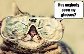 Has anybody seen my glasses?