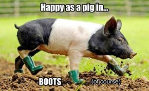 Happy as a pig in...