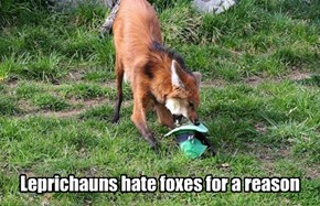 One Animal the Leprechauns Can't Outsmart