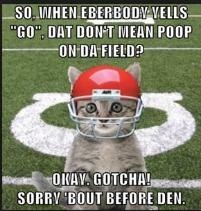 "SO, WHEN EBERBODY YELLS ""GO"", DAT DON'T MEAN POOP ON DA FIELD?  OKAY. GOTCHA!                                                      SORRY 'BOUT BEFORE DEN."