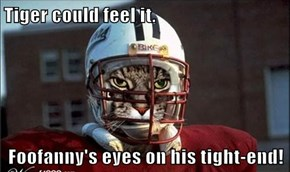 Tiger could feel it.  Foofanny's eyes on his tight-end!