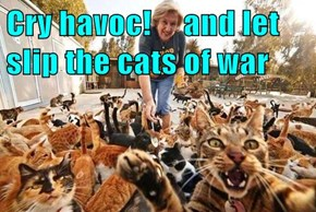 Cry havoc!     and let slip the cats of war
