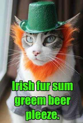 """I-rish"" fur sum greem beer pleeze."
