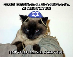 STOOPIE GOGGIE EATD ALL TEH HAMENTASHEN... AN I DIDNT GIT ANY!
