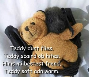 Teddy dunt flies. Teddy scaird ob hites. Hims mi bestest frend. Teddy soft adn warm.