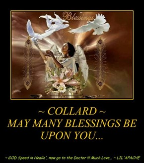 ~ COLLARD ~ MAY MANY BLESSINGS BE UPON YOU...