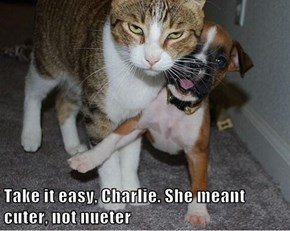 Take it easy, Charlie. She meant cuter, not nueter