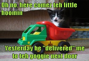 "0h no, here comez teh little hoomin  Yesterday he ""delivered"" me to teh goggie next door"