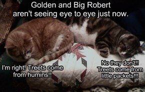Golden and Big Robert aren't seeing eye to eye just now.