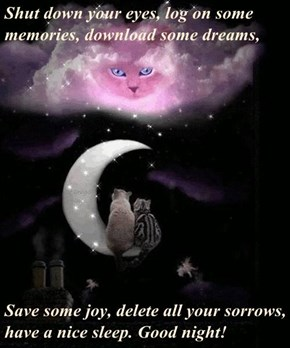 Shut down your eyes, log on some memories, download some dreams,   Save some joy, delete all your sorrows, have a nice sleep. Good night!