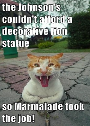 the Johnson's couldn't afford a decorative lion statue  so Marmalade took the job!