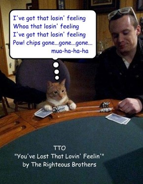 """Mr Chips"" (TTO ""You've Lost That Lovin' Feelin'"" by The Righteous Brothers)"