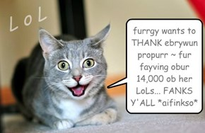 furrgy wants to THANK ebrywun propurr ~ fur fayving obur 14,000 ob her LoLs... FANKS Y'ALL *aifinkso*