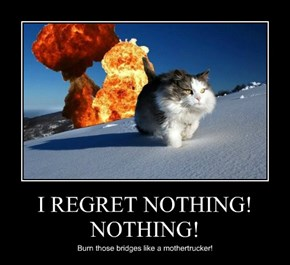 I REGRET NOTHING! NOTHING!