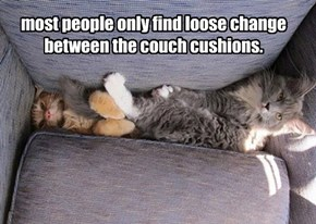 most people only find loose change between the couch cushions.