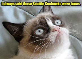 Tardar Sauce was bery surprized to hear dat teh Kuppykakers beat teh Seattle Seahawks..