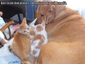 But Leah did protect dem frum da tail bandit.