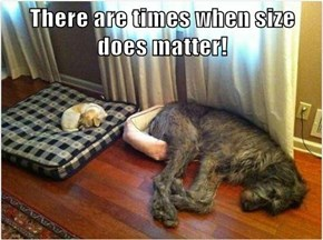There are times when size does matter!