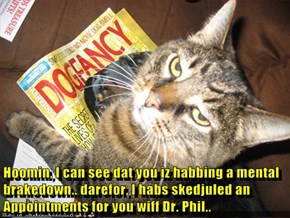 Hoomin, I can see dat you iz habbing a mental brakedown.. darefor, I habs skedjuled an Appointments for you wiff Dr. Phil..