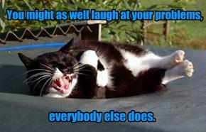 Snarky Cat is snarky.