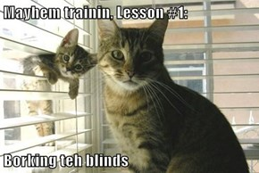 Mayhem trainin, Lesson #1:  Borking teh blinds