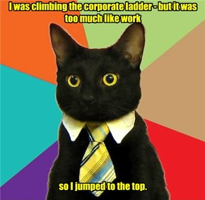 I was climbing the corporate ladder - but it was too much like work              so I jumped to the top.