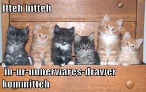 Itteh bitteh   in-ur-unnerwares-drawer kommitteh