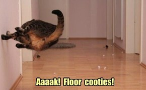 Aaaak!  Floor  cooties!