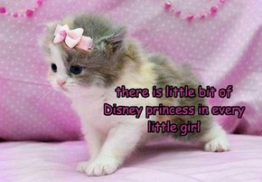 there is little bit of Disney princess in every little girl