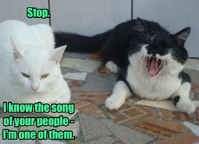 Stop.        I know the song of your people - I'm one of them.