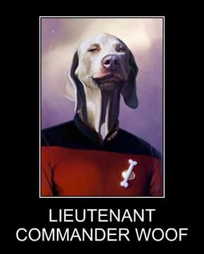 LIEUTENANT COMMANDER WOOF