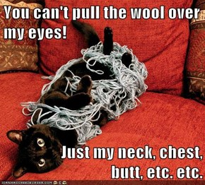 You can't pull the wool over my eyes!  Just my neck, chest,                 butt, etc. etc.