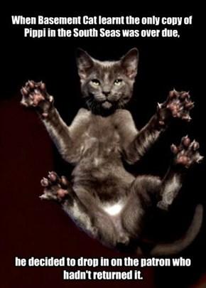 Little known fact.  Basement Cat is a BIG Pippi Longstocking Fan.