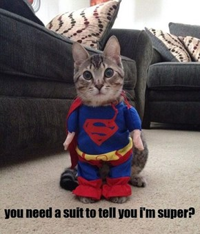 but all cats are super!