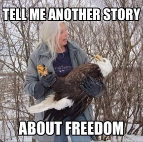 Eagles Love Their Bedtime Stories