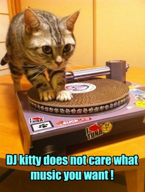 DJ kitty does not care what music you want !