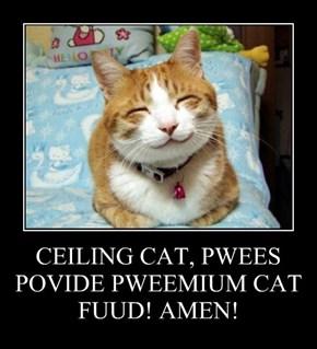 CEILING CAT, PWEES POVIDE PWEEMIUM CAT FUUD! AMEN!