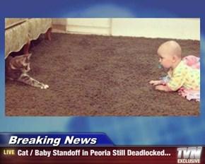 Breaking News - Cat / Baby Standoff in Peoria Still Deadlocked...