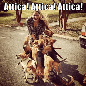 Attica! Attica! Attica!