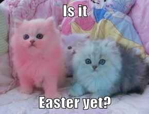 Is it   Easter yet?