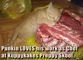 Punkin LOVES his work as Chef at Kuppykakes Preppy Skool..