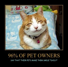 96% OF PET OWNERS
