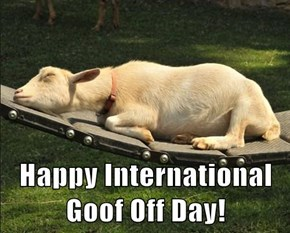 Happy International Goof Off Day!