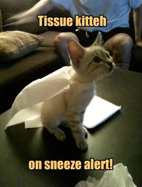 Super tough tissue!