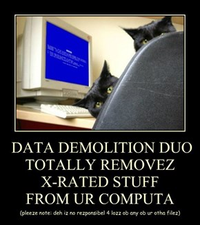 DATA DEMOLITION DUO TOTALLY REMOVEZ  X-RATED STUFF  FROM UR COMPUTA