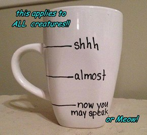 For all Caffeine addicts