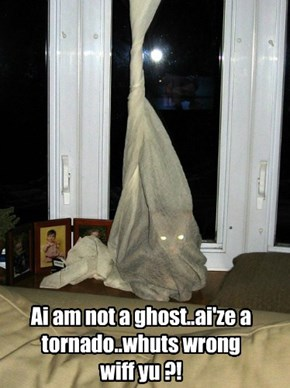 Ai am not a ghost..ai'ze a tornado..whuts wrong wiff yu ?!