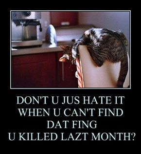 DON'T U JUS HATE IT WHEN U CAN'T FIND  DAT FING  U KILLED LAZT MONTH?