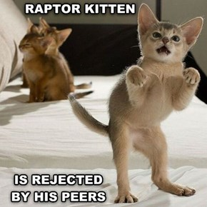 That's Not Rejection...It's Fear!  Rawr!